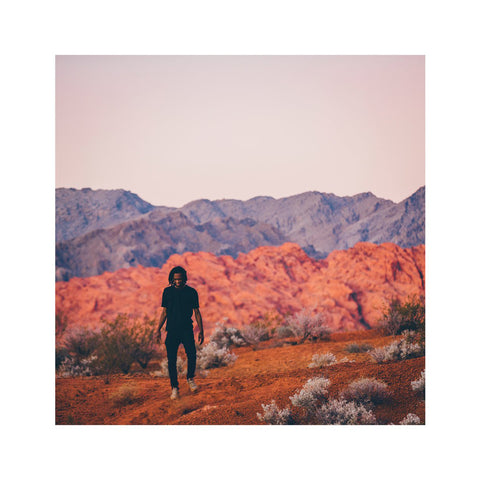"[""Saba - 'Bucket List Project' [(Purple) Vinyl LP]""]"