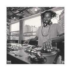 <!--2014072207-->Damu The Fudgemunk - 'Public Assembly' [CD]