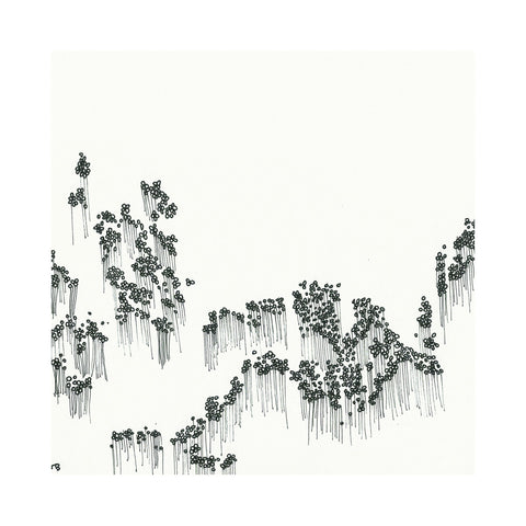 "[""Wowflower - 'Balloons' [(Black) Vinyl LP]""]"