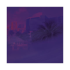 "Serato - '10"" Glass Series' [(Purple Glass) 10"" Vinyl Control [2x10""]]"