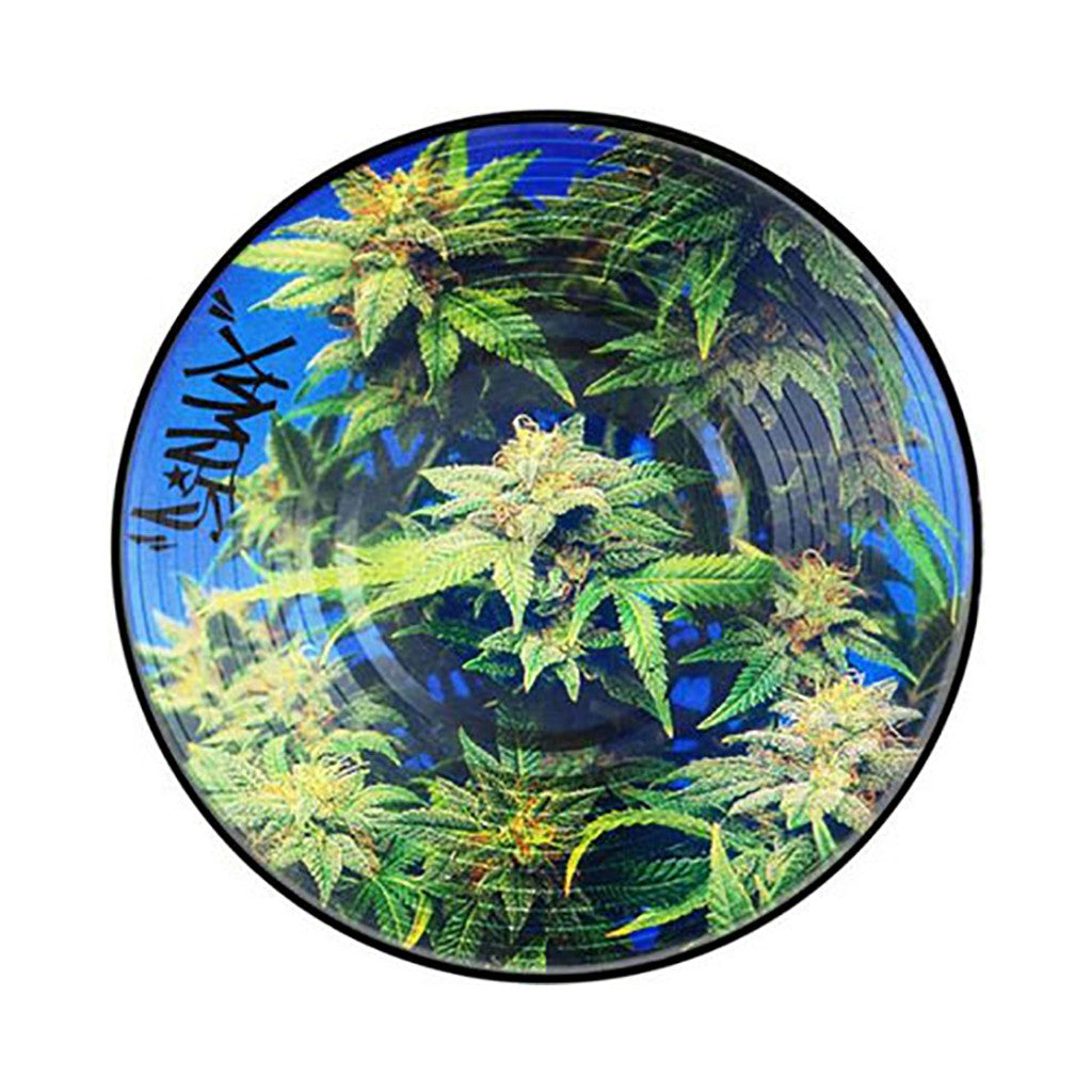"<!--019000101011593-->Sicwax - 'Sic-Chronic' [(Picture Disc) 12"" Vinyl Control]"