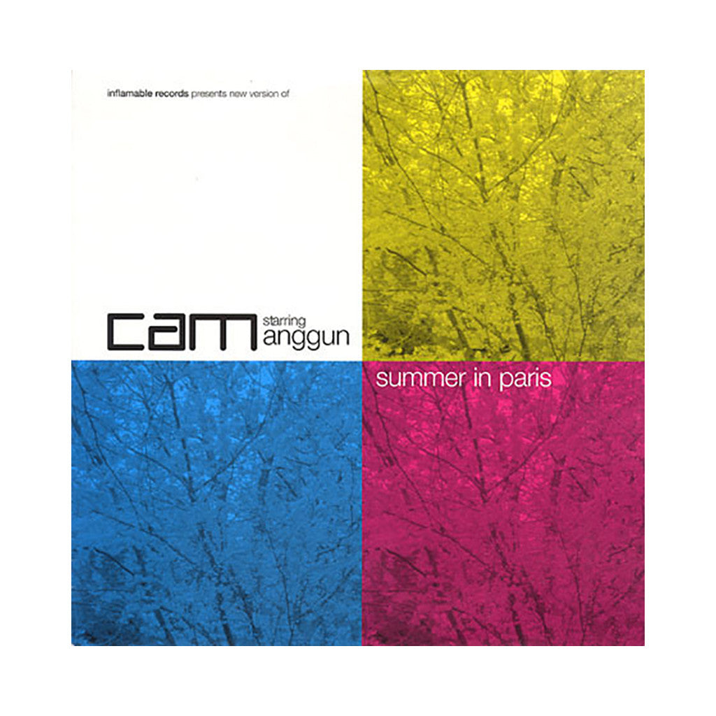 "DJ Cam - 'Summer In Paris/ Summer In Paris (Remixes)' [(Black) 12"" Vinyl Single]"