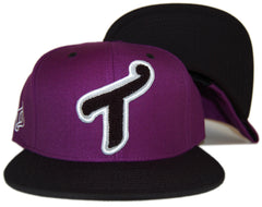 "<!--020120529045430-->T.I.T.S. - 'Letterman """"T""""' [(Purple) Snap Back Hat]"