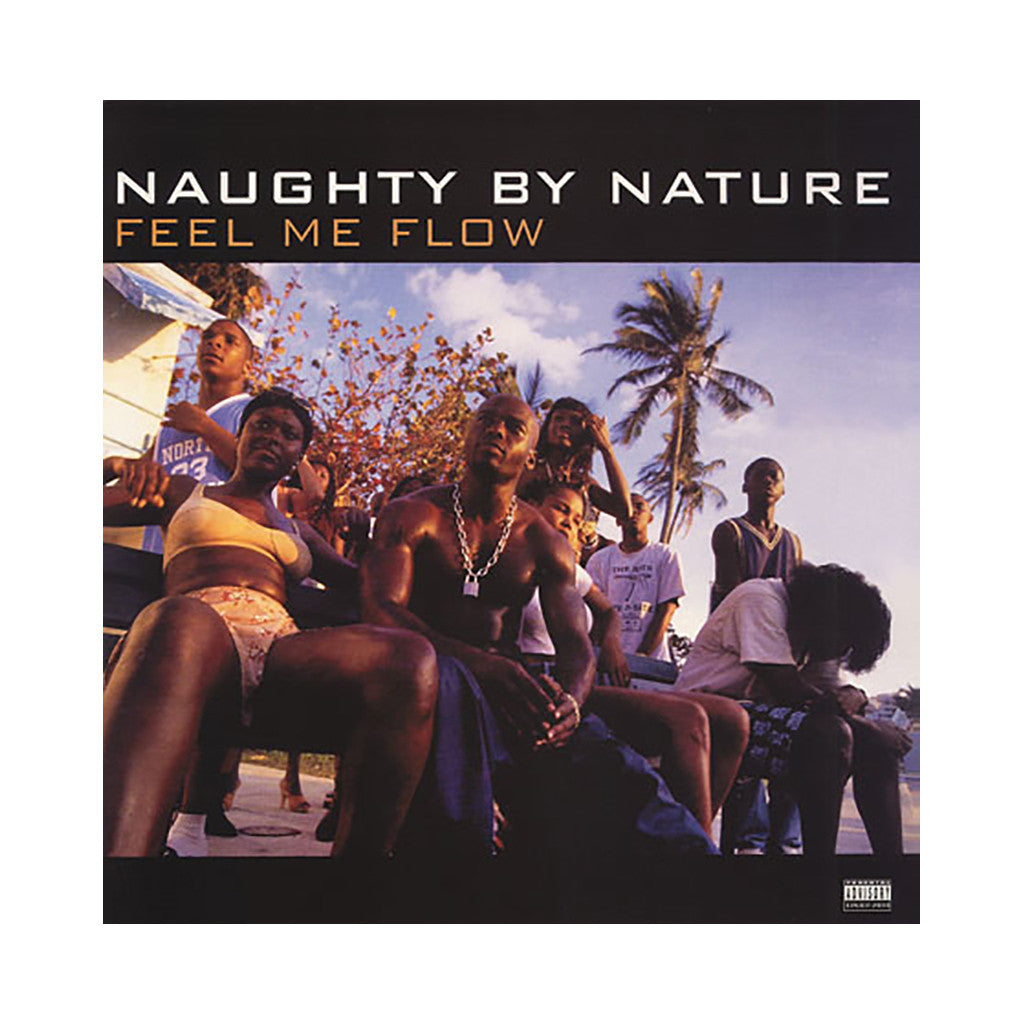 "<!--019950101011808-->Naughty By Nature - 'Feel Me Flow/ Feel Me Flow (E-A-Ski Remix)/ Hang Out And Hustle' [(Black) 12"""" Vinyl Single]"