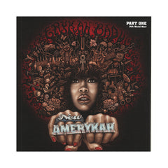 Erykah Badu - 'New Amerykah: Pt. 1 (4th World War)' [CD]