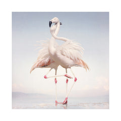 <!--120140826064830-->Rustie - 'Green Language' [(Black) Vinyl [2LP]]