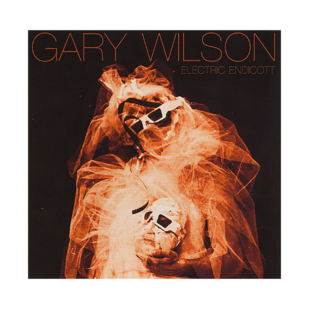<!--120110222026601-->Gary Wilson - 'Electric Endicott' [CD]