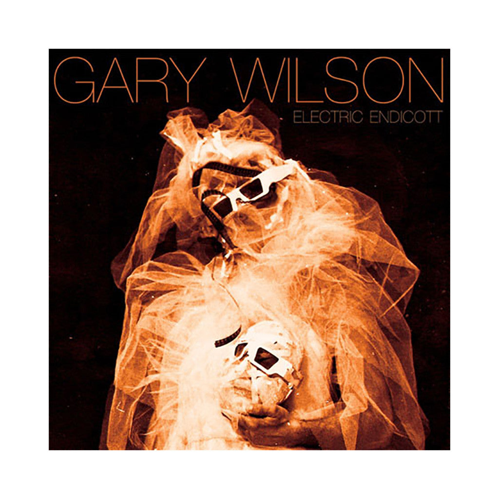 Gary Wilson - 'Electric Endicott' [(Black) Vinyl LP]