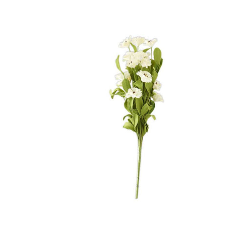 White Dianthus Spray