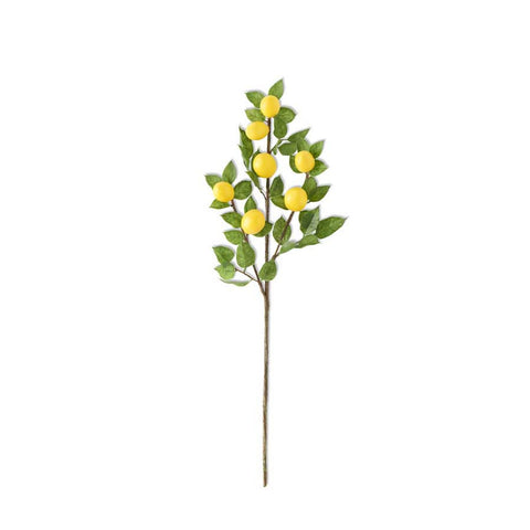Lemon & Foliage Spray Stem