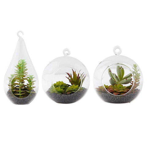Glass Ornaments with Assorted Succulents