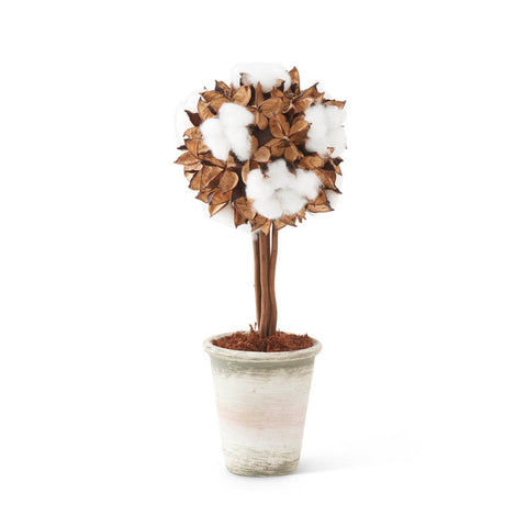 Potted Cotton Pod Topiary