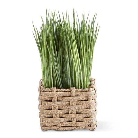 Grass in Square Basket