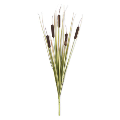 Dark Brown Cattail Stem