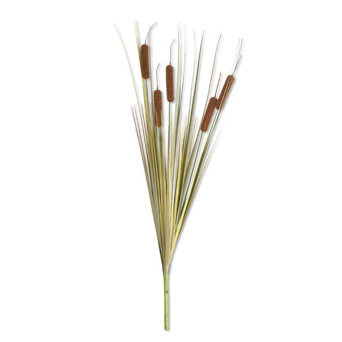 Light Brown Cattail Stem