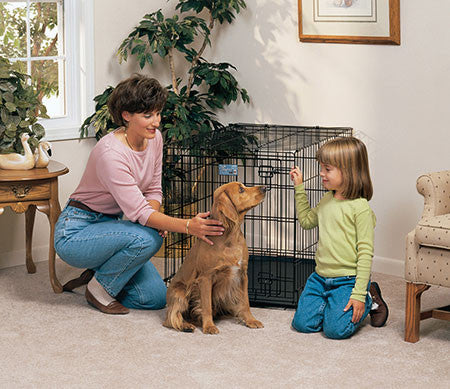 The Various Uses of a Dog Crate