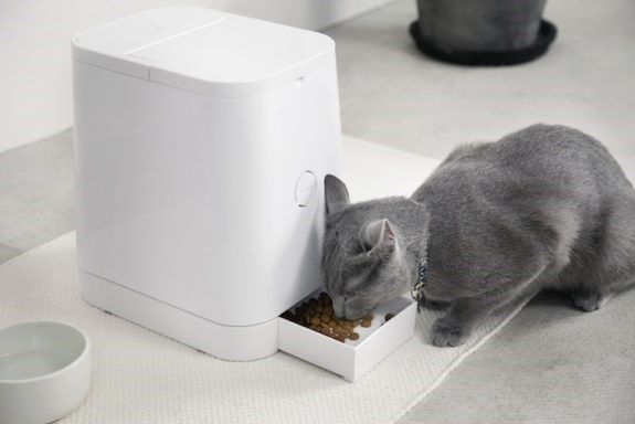 Benefits of Using the Best Automatic Cat Feeders