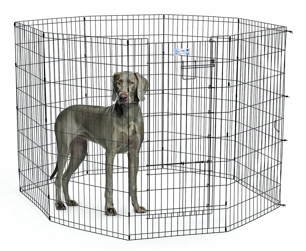 Pet Exercise Pen vs. Crate: Which Is Right for Your Dog?