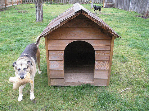 New Age Pet Dog Houses
