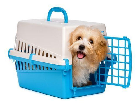 Ultimate Guide to Dog crates 2018