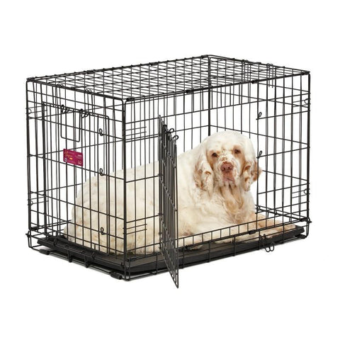 iCrate Double Door Dog Crate-Crate-Midwest-1518DD - 18L x 12W x 14H-Pet Crates Direct