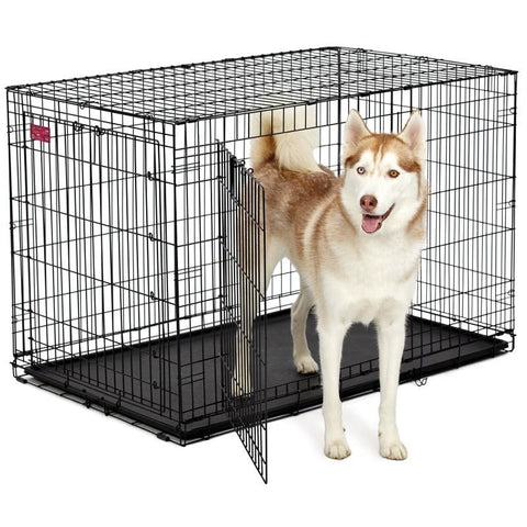 Life Stages Ace Double Door Dog Crate-Crate-Midwest-418DD - 18.5 L x 12.75 W x 14.5 H-Pet Crates Direct