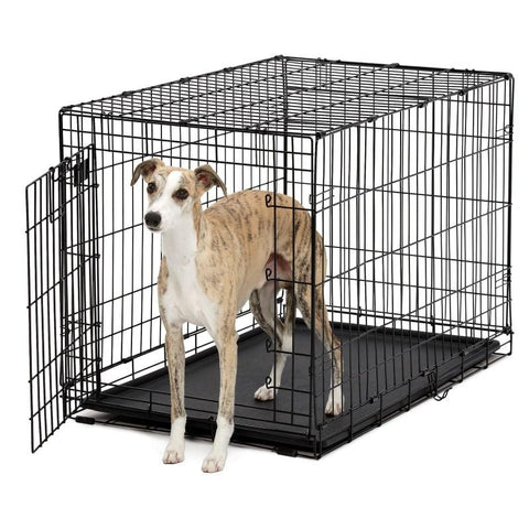 Life Stages Ace Single Door Dog Crate-Crate-Midwest-418 - 18.5 L x 12.5 W x 14.5 H-Pet Crates Direct