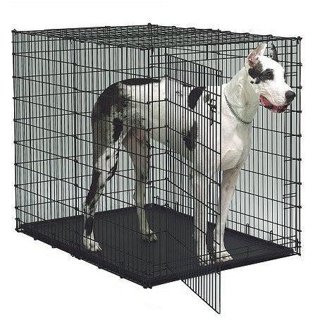 Midwest Colossal Dog Crate Crate Midwest Grande Jpg V