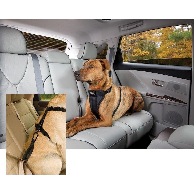 Tru Fit Smart Dog Seat Belt Harness With Seatbelt Tether