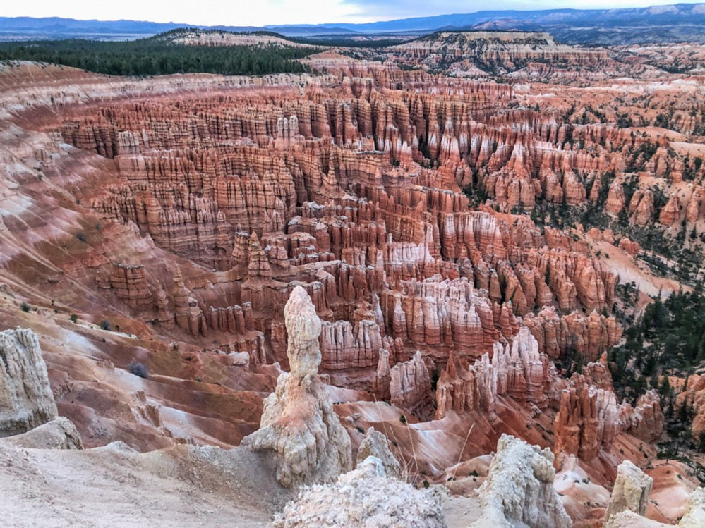 Marvel at the hoodoos in Bryce Canyon National Park!