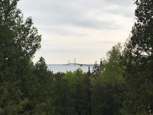 The view of Mackinac Bridge from Straits State Park.