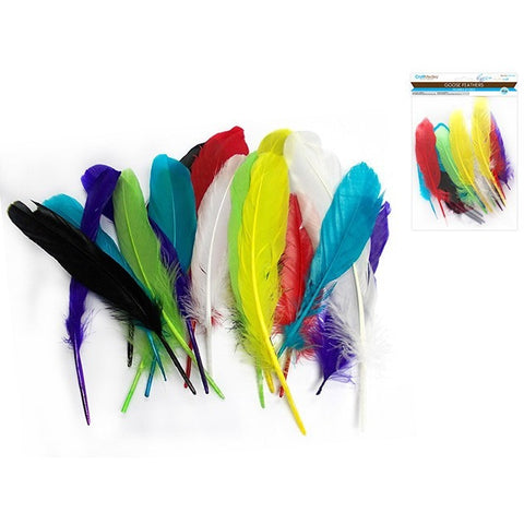 Goose Feather Pack - Assorted Colours