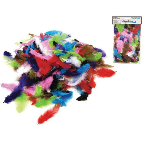 Craft Feather Pack - Assorted Colours