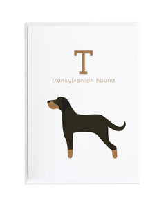 Alphadog Alphabet Series Transylvanian Hound by Anne Green Design Copyright 2015