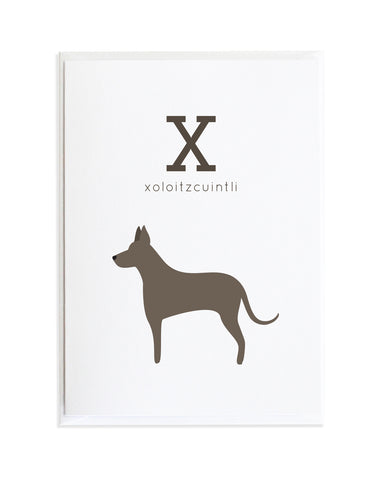 Alphadog Alphabet Series Xoloitzcuintli by Anne Green Design Copyright 2015