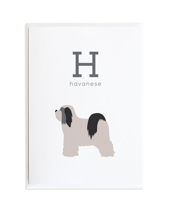 Alphadog Alphabet Series Havanese by Anne Green Design Copyright 2015