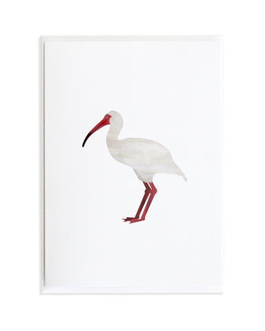 Watercolor Ibis Bird Greeting Card by Anne Green Design