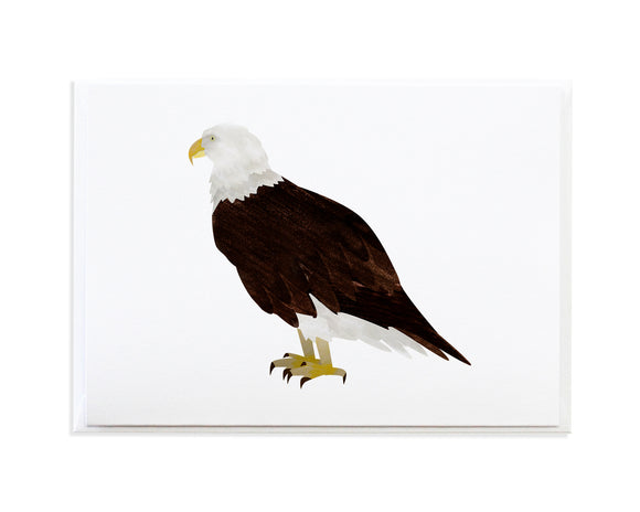 Watercolor Bald Eagle Greeting Card by Anne Green Design