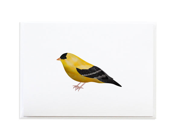 Watercolor Goldfinch Greeting Card by Anne Green Design