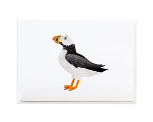 Watercolor Puffin Bird Greeting Card by Anne Green Design