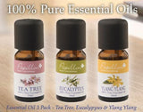 Essential Oil 3 Pack - Tea Tree, Eucalyptus & Ylang Ylang