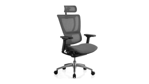 Seating Black Frame / Grey Mesh / With Headrest iOO Chair