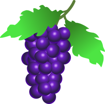 Grape Delight & Other Delicious Berries