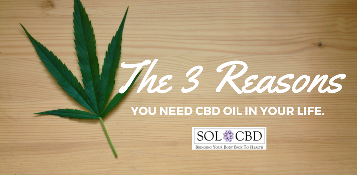 The 3 CBD Oil Effects That You Need in Your Life