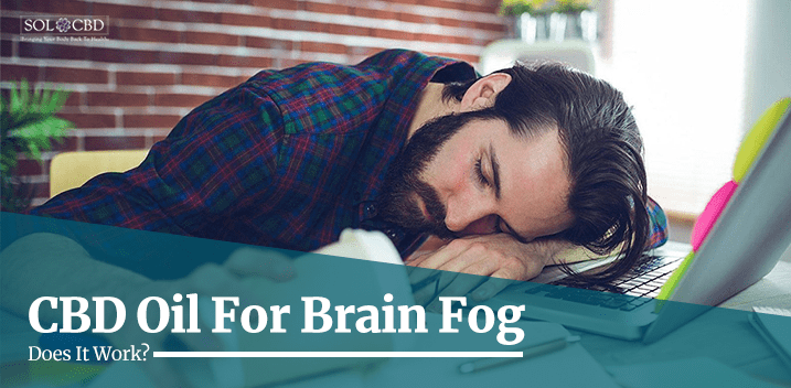 Does CBD cause brain fog?