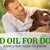 How To Use CBD Oil For Dog Seizures