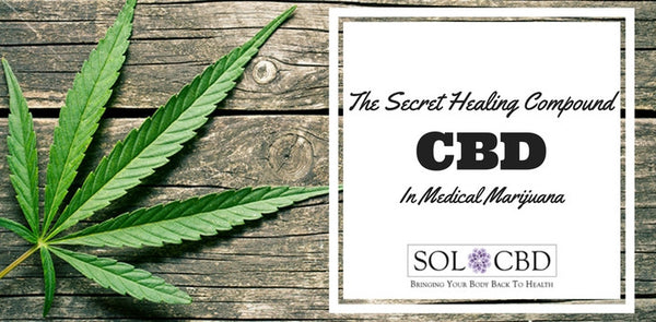 CBD: The Secret Healing Compound in Medical Marijuana