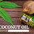 CBD & Coconut Oil: Uses and Benefits That Will Surprise You