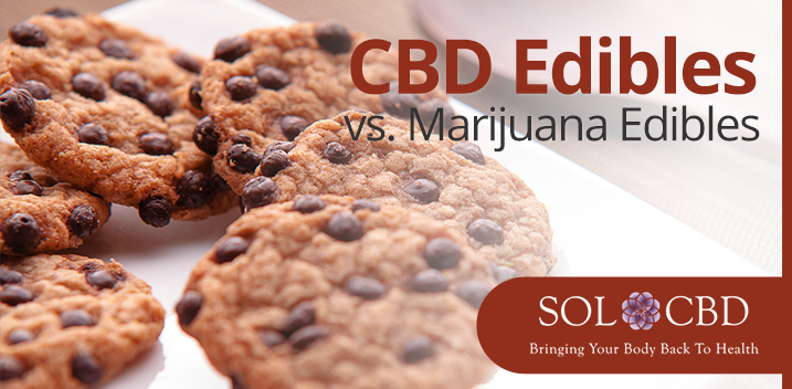 CBD Edibles Vs. Marijuana Edibles: All You Need to Know