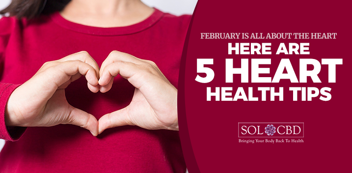 February Is All About the Heart - Here Are 5 Heart Health Tips